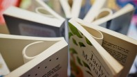 Close-up of paperback books