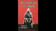 'Apostrophe to David' by Anita Campbell