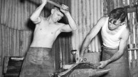 Two blacksmiths working with hammers and an anvil to repair a motor part during World War II