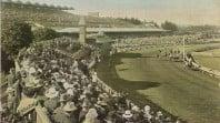 Postcard of Flemington racecourse c 1906