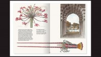 black background with double page spread with text and images including crustacean and flowers