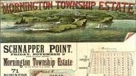 Mornington Township Estate