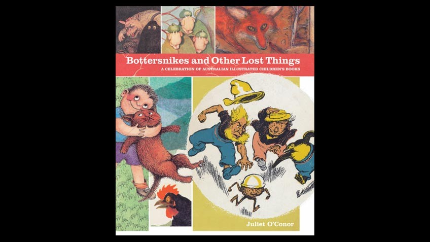Cover of Bottersnikes & other lost things