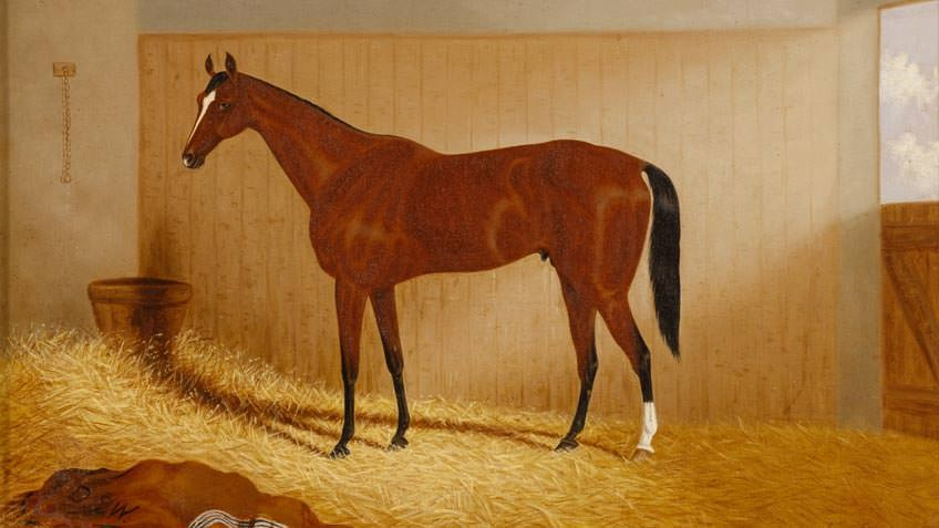 1889 painting of Carbine, by Frederick Woodhouse Jnr