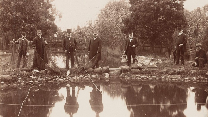 Seven men, some holding fishing nets, stand beside a long pond