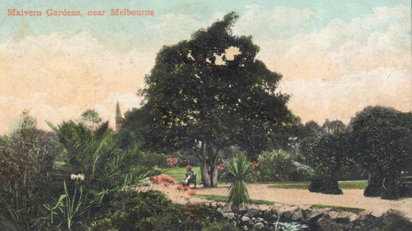 Vintage colour postcard of landscaped gardens