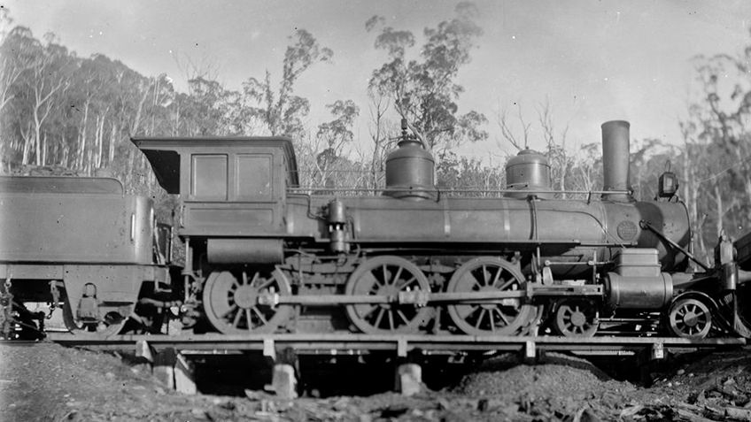Black and white photo of steam locomotive travelling through bush