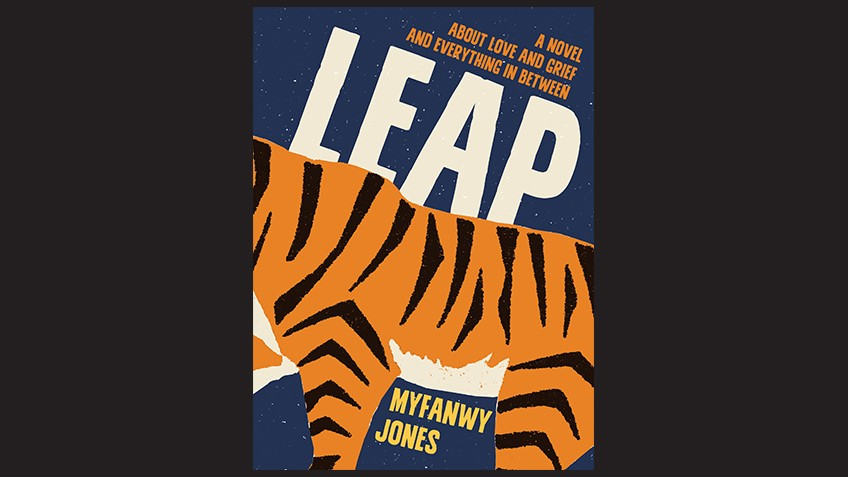 Cover of Leap by Myfanwy Jones