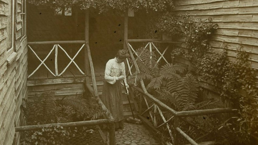 sepia photograph of a woman sweeping outside steps in fern-filled garden