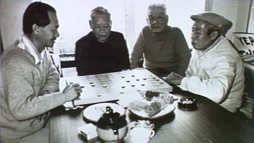 Traditional (Chinese) chess, Flemington, 1987