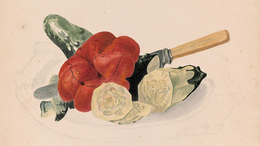 Watercolour of red capsicum and cucumber on a plate, dissected by knife
