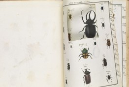 book with illustrations of bugs, some removed