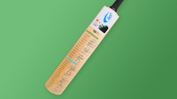 An autographed cricket bat against a green background