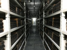 Books stored at Ballarat offsite store. Image: Matthew van Hasselt