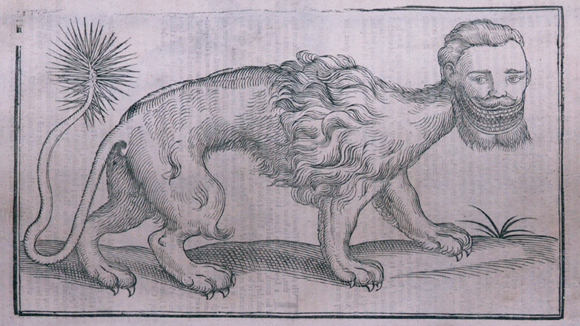 Historical drawing of a manticore
