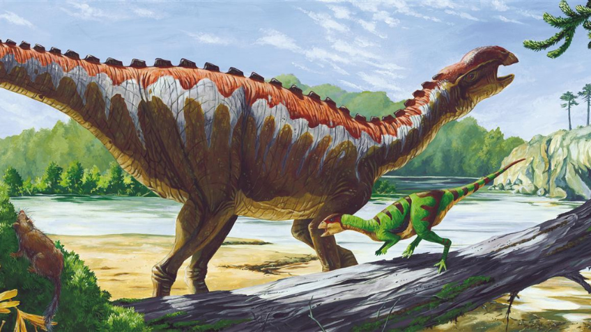 Colour drawing of a dinosaur