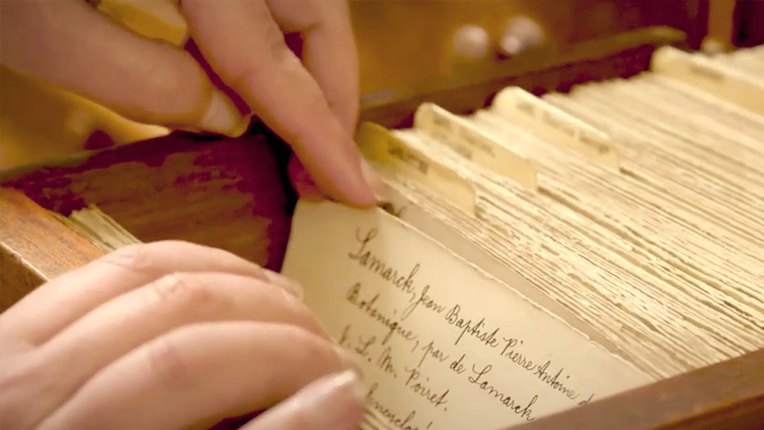 Fingers scroll through index cards in an old-fashioned library card catalogue