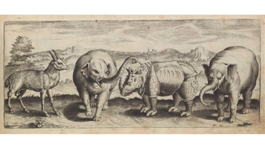 Drawing of elephants and other creatures