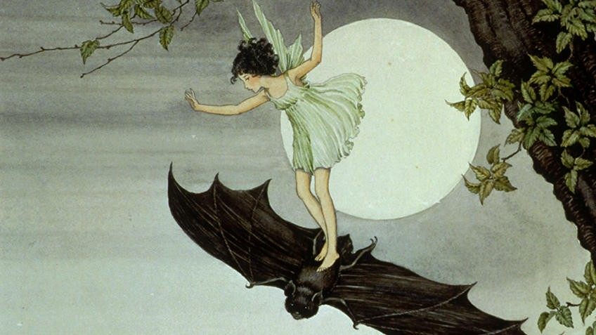 Ink and watercolour illustration of a fairy riding on a bat