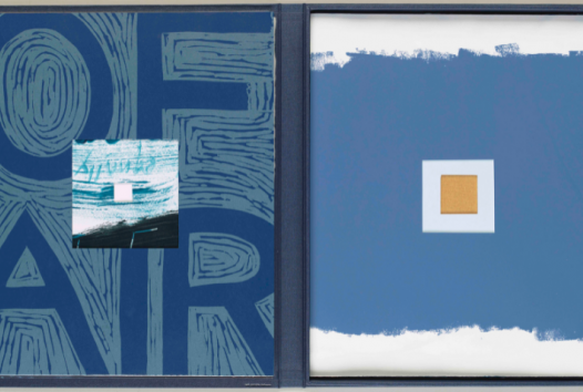 Two blue book covers