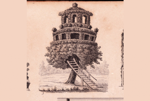Drawing of a tree house