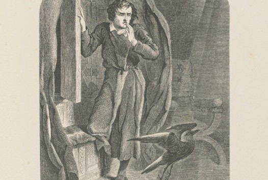 Illustration of man in dressing gown and a large raven