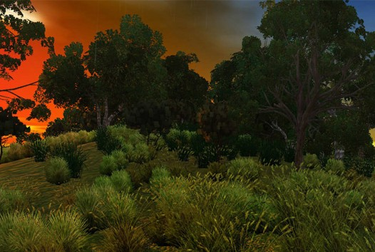 landscape photograph of bushland at sunset with red sky in left-hand corner with grasses and trees in the foreground