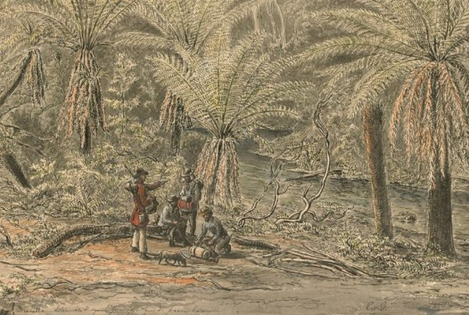 Upper reaches of the Yarra River, four men with backpacks and guns and a dog in rain forest beside the river.
