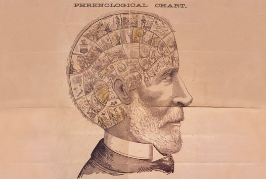 Phrenological chart of a man's head